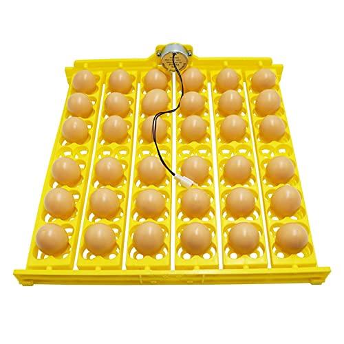 NMSL Incubadora De Huevos para Incubar Huevos, Incubadora De 36 Huevos para Incubar, Volteadora Automática para Huevos De Gallina para Incubar, Bandeja De Incubadoras Giratorias