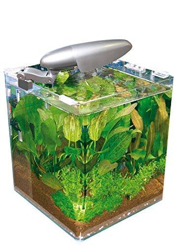 Wave Acquario Box cubo 25 25x25x30h 16 lt con Filtro e Lampada