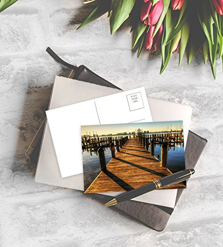 Postcards Bulk – 40-Pack Assorted Postcards, Postcards Variety Pack, 40 Unique Designs, 4 x 6 Inches