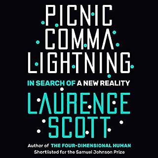 Picnic Comma Lightning cover art
