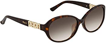 Ferragamo Salvatore Brown Sunglasses