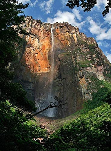 XiuTaiLtd Puzzle Adulto Parque Nacional Canaima Cascada Angel Falls Venezuela 1000 Piezas