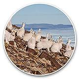 Impresionantes pegatinas de vinilo (juego de 2) 30 cm – Arctic Hare Group White Rabbit Hares Fun Decals para portátiles, tabletas, equipaje, reserva de chatarras, neveras, regalo genial #44142