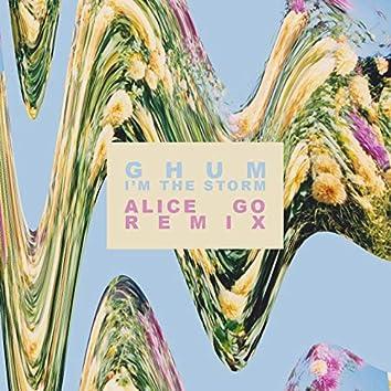 I'm the Storm (Alice Go Remix)