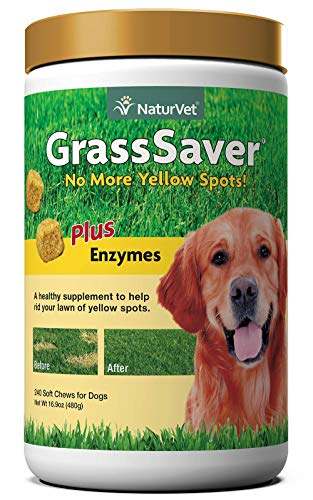 NaturVet – GrassSaver Supplement for Dogs – Healthy Supplement to Help Rid Your Lawn of Yellow Spots – Synergistic Combination of B-Complex Vitamins & Amino Acids – 240 Soft Chews