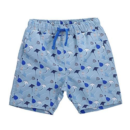 LACOFIA Pantalones Cortos de baño para niños Bañador de Playa con Cintura elástica para niños Pescado Azul 10-12 años