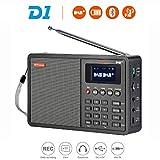 GT MEDIA D1 Tragbares DAB+ Radio (UKW, Bluetooth, TF-Karte, Kopfhöreranschluss, AUX-IN, Uhr/Wecker/Sleep Timer) 1,8'' LCD-Anzeige Externe Antenne und Aufladbare Batterie