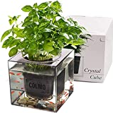 COLMO Aquaponic Fish Tank - Hydroponic Garden Planting Growing System Planting Pot Fish Bowl Compressed Soil Planting Kit Suitable for Small Fish and Planting (Kit)