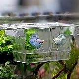 Hrph Aquarium d'Elevage Incubateur de Poissons Boîte Ecloserie d'Alevins Piege Eleveur de Poissons Flottant pour Aquarium Equipement