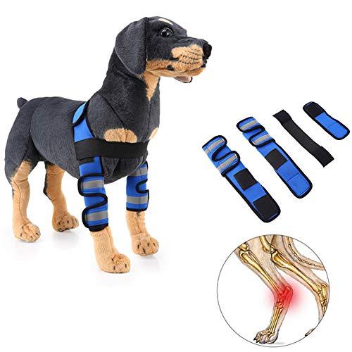 Cheaonglove Bandage Hund Kniebandage Hund Schmerzlinderung für Hunde Hundebeinstütze Hundebeinverband Unterstützung für das Hinterbein des Hundes Reflective-Blue,L