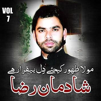 Shadman Raza - Mola Zahoor Kijiye Dil Beqarar Hai, Vol. 7