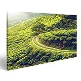 Bild Bilder auf Leinwand Teeplantage im Cameron Hochland