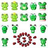 YHNJI Juego de 36 figuras de rana en miniatura de resina, diseño de mariquita, para jardín de hadas,...