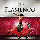 Redefined Flamenco