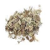 RILLATEK Sphagnum Moss para Bonsai 12L Sustrato de Musgo de turba Naturales para la regulación de la Humedad en el terrario para la orquídea PHALAENOPSIS Suministros de jardín (Color : -, Talla : -)