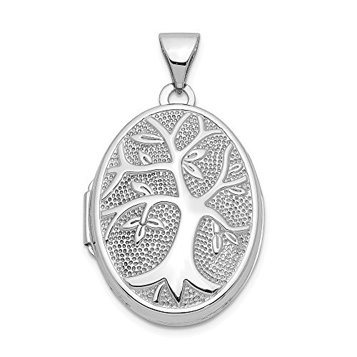14k White Gold 21x16mm Oval Tree Photo Pendant Charm Locket Chain Necklace That Holds Pictures Fine Jewelry For Women Gifts For Her