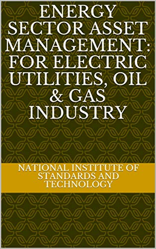 Energy Sector Asset Management: For Electric Utilities, Oil & Gas Industry (English Edition)
