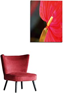 longbuyer Art Decor Decals Stickers Macro - Close-up View of Anthurium - Tail Flower - Flamingo Flower - laceleaf - Flower - Petals in a Bungalow Garden in Matale Sri Lanka Mural 24