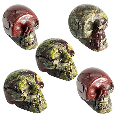 favoramulet Mini 1' Crystal Human Skull Head Statue Figurine, Hand Carved Pocket Stone Halloween Sculptures Decoration Healing Reiki, Pack of 5, Dragon Bloodstone