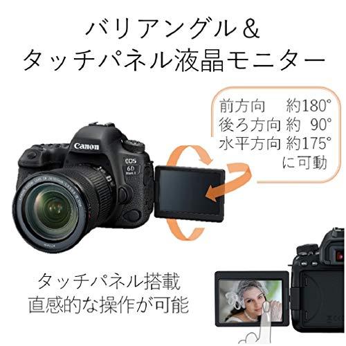 Canon(キヤノン)『EOS6DMarkII(1897C001)』