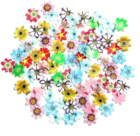 GEORLD 48Pcs Edible Cupcake Toppers Wafer Flower Cake Decoration Birthday Party Mixed Size Colour product image