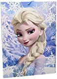 Carpeta Frozen Heart Gomas