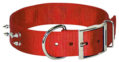 Hamilton SBD 20RD Spiked Bull Dog Collar with Double Thick Nylon, 1 3/4 by 20-Inch, Red