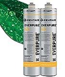Everpure Filtro 4c - Confezione da 2