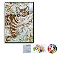 Sifity DIY 猫と色クロスステッチキット刺繍用設計図、針2本、刺繍用糸22x31 cm 14CTクロスステッチ刺繍 キット