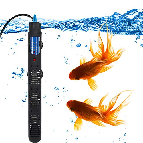 What is the Best Heater for an Aquarium?