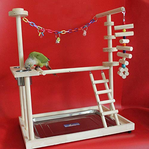 Kit gabbia per uccelli da volo Gabbia per uccelli Playground Parrot Playground Bird Pycher con scale Femeder PAnrot Bite Toys Bird Frame Stand Cage Bird Suspension Bridge Gabbie per uccelli da compagn