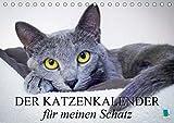 Der Katzenkalender für meinen Schatz (Tischkalender 2021 DIN A5 quer)