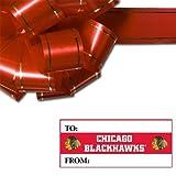 NHL Chicago Blackhawks Gift Tag Sheet, 8.5 x 11-inches
