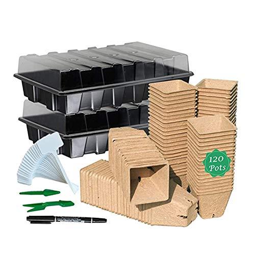 CawBing Anzuchtkasten Set, Zimmergewächshaus Anzuchtkasten, Mini Gewächshaus Anzucht Set, Kunststoff Anzuchtschalen mit Deckel und Gartengeräte, Ideal für Pflanzenwachstum und Saatgutkeimung (1 Set)