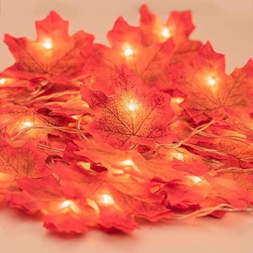 MUSCCCM Decorazioni del Ringraziamento Ghirlanda di Foglie Illuminate, Luci Acero Autunno a Corda 6.56ft 20 LED, Ghirlande d'Autunno per l'autunno, Halloween, Natale, Picnic, Arredamento per Esterni