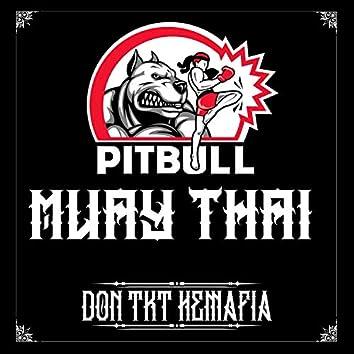 Pitbull Muay Thai