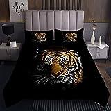 Tiger Tagesdecke 220x240cm Safari Katzendruck Steppdecke für Kinder Brennen Wildtier Thema Bettüberwurf Tierwelt Stil Design Schwarz 3St