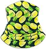 Fleece Neck Warmer Gaiter Funny Pineapples Soft Microfiber Headwear Face Scarf for Winter Cold Weather & Keep Warm for Mens Womens