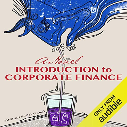 Couverture de A Novel Introduction to Corporate Finance
