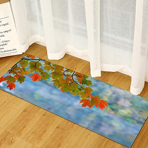 Alfombra de cocina con patrón de paisaje para la puerta del hogar, dormitorio, entrada, lavable, antideslizante, absorbente, A15, 50 x 160 cm