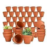 "June Fox 48 PCS Small Terracotta Pots, 2"" Mini Clay Pots, Flower Pots Succulent Nursery Pots with Drainage Holes for Indoor/Outdoor Plants/Crafts/Wedding Favor"