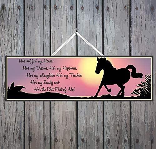 PotteLove Señal de metal de aluminio Señal de calle, dueño de caballo para garaje, carretera, avenida de granja, casa, sala de casa, señal de aviso para interiores y exteriores, idea de regalo