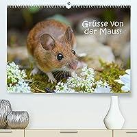 Gruesse von der Maus! (Premium, hochwertiger DIN A2 Wandkalender 2022, Kunstdruck in Hochglanz): Zauberhafte Bilder einer kleinen Maus! (Monatskalender, 14 Seiten )