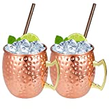 Set of 2 Copper Hammered Moscow Mule Mugs Drinking Cup with 2 Copper