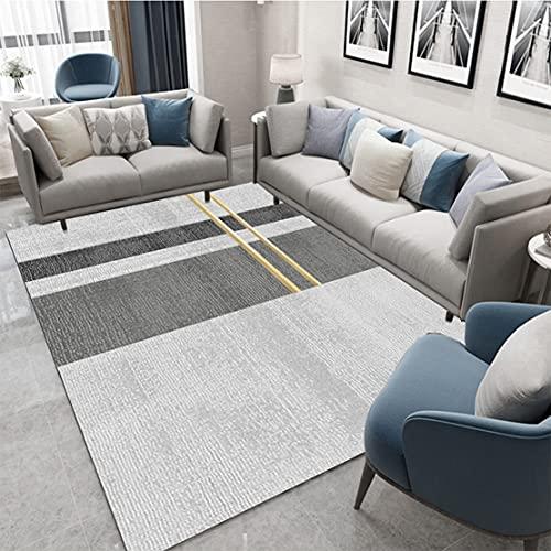SYN-GUGAI Alfombras de hogares Grises Simples, alfombras de Patrones geométricos, adecuados para la Sala de Estar y el Dormitorio Cojines de Mesa de café, alfombras Suaves de área Media