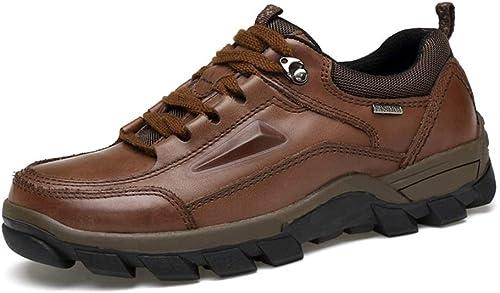 Hommes, Grande Taille, Chaussures de Sport, Chaussures de randonnée, Chaussures de randonnée, Chaussures de Sport