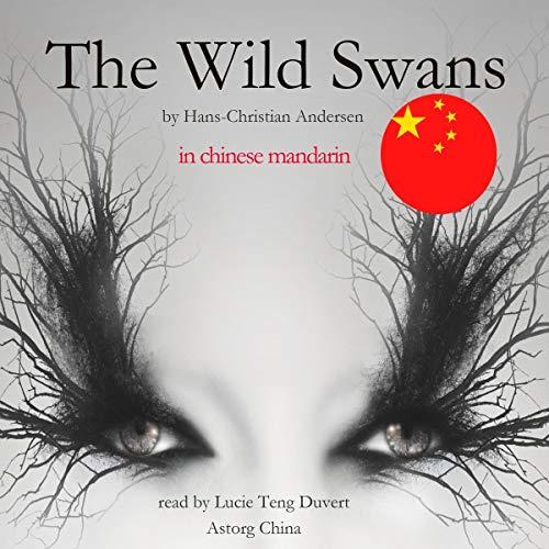 The Wild Swans - 野天鹅 cover art