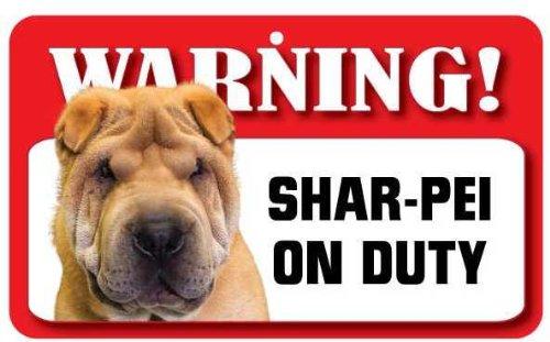 in cartoncino laminato Leonberger Pet Dog