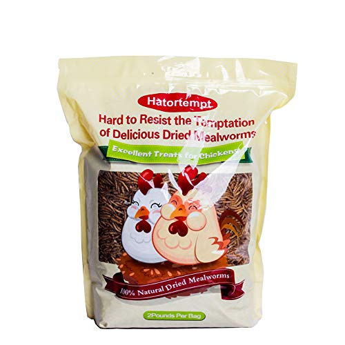 Hatortempt 2Lbs Dried Mealworms for Wild Bird,Chickens, Fish (2lbs)