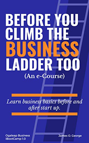 Before You Climb the Business Ladder Too: Learn Business Basics before and after startup (English Edition)